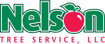 nelson_logo_footer