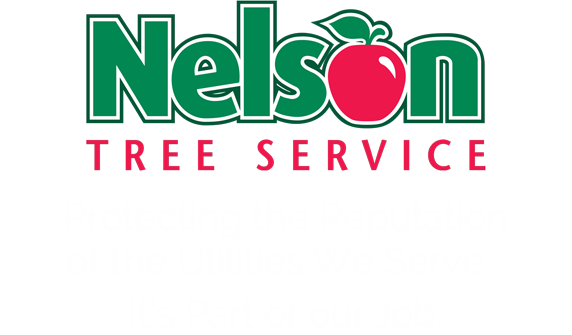 Nelson Tree Service